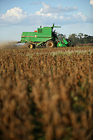 Soybeans are harvested outside of Sinop, in Mato Grosso state in Brazil on April 8, 2008. (Photo/Scott Dalton)