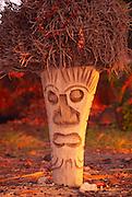 Coconut stump carved into tiki, Hawaii<br />