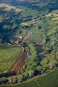 Farm, Wailua,  Kauai, Hawaii