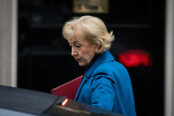 © Licensed to London News Pictures. 31/01/2017. London, UK. Environment, food and Rural Affairs Secretary Andrea Leadsom arriving at Downing Street for a cabinet meeting this morning. Photo credit : Tom Nicholson/LNP