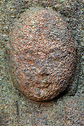 head of a a Sekibutu, stone Buddha, late Edo period