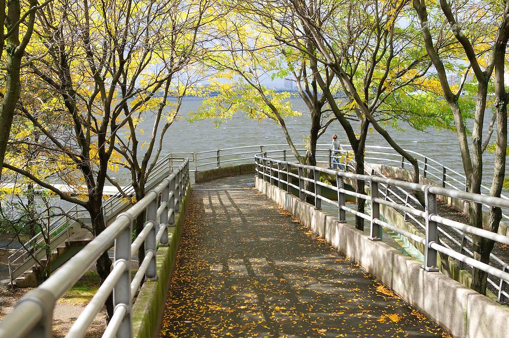 Charles River Esplanade, Boston, Massachusetts
