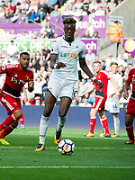 Football - 2017 / 2018 Premier League - Swansea City vs. Watford<br /> <br /> Tammy Abraham of Swansea City scores his team's first goal, at the Liberty Stadium.<br /> <br /> COLORSPORT/WINSTON BYNORTH