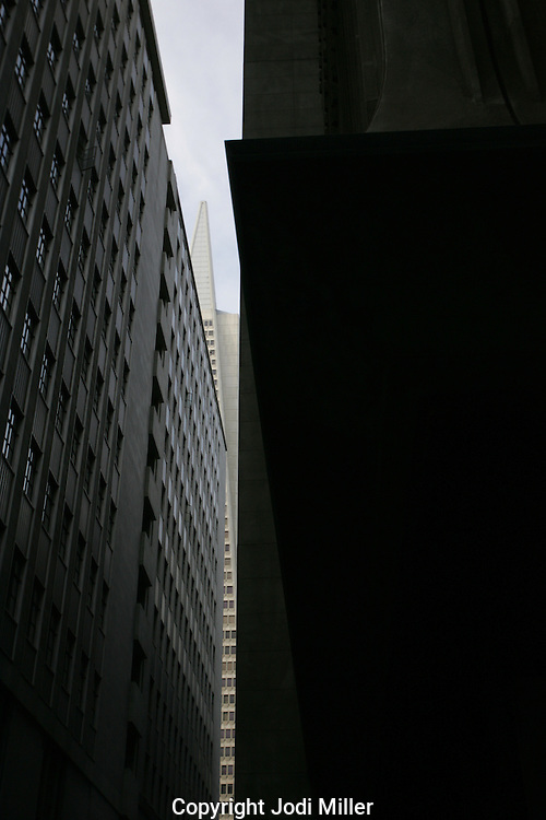 Buildings in downtown San Francisco.