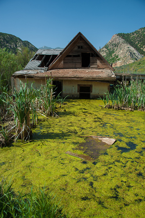 Abandoned homestead under water off highway 89 in Thistle, Utah