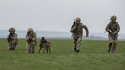 26/03/2014.  Members of the Military Working Dog section put on a display as the British Army reveal it's new specialist, combat and command skills formation today. This new part of the Army will be made up of 36000 Regular and Reserve soldiers, which is a third of the army as a whole and supports the logistics of operations both in the UK and abroad.  The command will officially launch on the 1 Apr 14.  Alison Baskerville/LNP