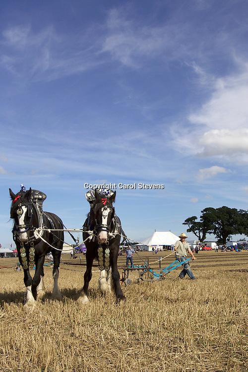 European Horse Ploughing Competition 2016<br /> Jim Elliott