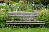 Polystichum setiferum pulcherrimum 'Bevis', ferns growing around a wooden bench in Derry Watkin's Special Plants Garden, Cold Ashton, Chippenham, Somerset, UK