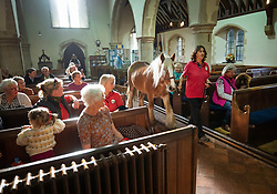© Licensed to London News Pictures. 06/10/2019. Selsey, UK. A horse called Murphy is brought to the alter during the annual Service of Blessing of Animals at St Peter's Church in Selsey, West Sussex. Parishioners bring their pets to the church for the annual service after earlier attending a Harvest Festival celebration. Photo credit: Peter Macdiarmid/LNP