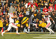 November 02 2013: Wisconsin Badgers cornerback Darius Hillary (5) intercepts a pass intended for Iowa Hawkeyes tight end C.J. Fiedorowicz (86) during the second half of the NCAA football game between the Wisconsin Badgers and the Iowa Hawkeyes at Kinnick Stadium in Iowa City, Iowa on November 2, 2013. Wisconsin defeated Iowa 28-9.