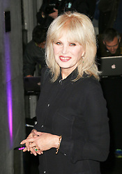 © Licensed to London News Pictures. Joanna Lumley attending the London Evening Standard Theatre Awards at the The Savoy Hotel in London, UK on 17 November 2013. Photo credit: Richard Goldschmidt/PiQtured/LNP