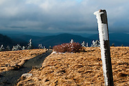 Ice sticks to a trail marker for the Appalachian Trail on Roan Bald, on the North Carolina/Tennessee state line<br />