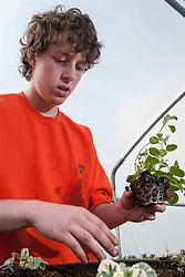 Prisoners tending the gardens in UK prison