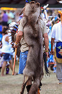 Native American wearing a wolf pelt during a powwow.