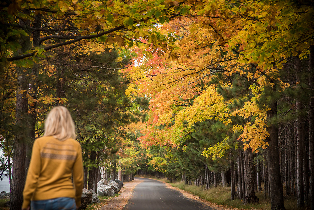A tunnel of trees with fall foliage along Lake Superior at Presque Isle Park in Marquette, Michigan.