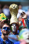 Fans of Italy during the 2014 FIFA World Cup match at Itaipava Arena Pernambuco, Recife metropolitan area<br /> Picture by Stefano Gnech/Focus Images Ltd +39 333 1641678<br /> 20/06/2014
