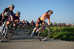 Karol-Ann Canuel (Boels Dolmans) at the front of the bunch at the 103 km Stage 1 of the Boels Ladies Tour 2016 on 30th August 2016 in Tiel, Netherlands. (Photo by Sean Robinson/Velofocus).