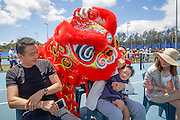 January 07, 2017: Members of the Chinese community enjoyed a Lion Dance to welcome China's top ranked player Zhang Shuai to the Apia International Sydney 2017 at Sydney Olympic Park Tennis Centre. (Photo by Hugh Peterswald/Icon Sportswire)