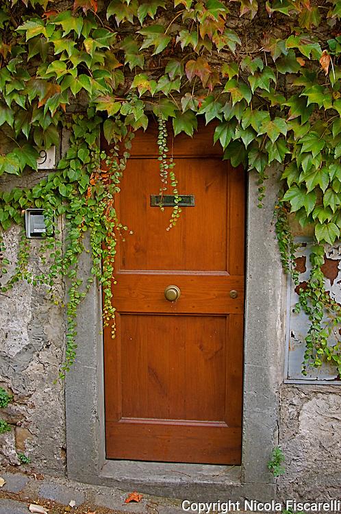 Tuscan door with ivy.
