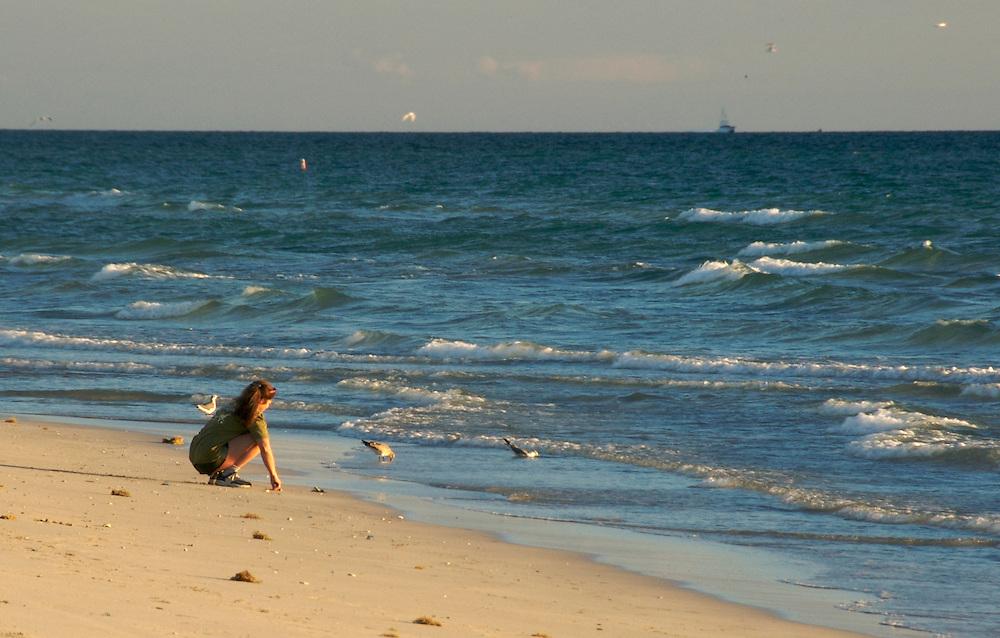 Lady on the Beach early morning, feeding seagulls in Miami Beach