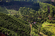 Conceicao do Castelo_ES, Brasil...Lavouras de cafe vistas ao lado de tercho da Rota Imperial...Coffee plantation next to Imperial Route...Foto: LEO DRUMOND / NITRO