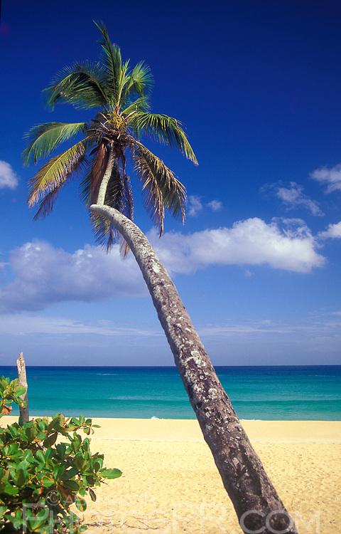 Tubos beach