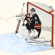 Clay Witt #31 of the Northeastern Huskies in net during The Beanpot Championship Game at TD Garden on February 10, 2014 in Boston, Massachusetts. (Photo by Elan Kawesch)