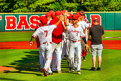 20 May 2019:  Redbirds celebrate a win. Missouri Valley Conference Baseball Tournament - Southern Illinois Salukis v Illinois State Redbirds at Duffy Bass Field in Normal IL<br /> <br /> #MVCSPORTS