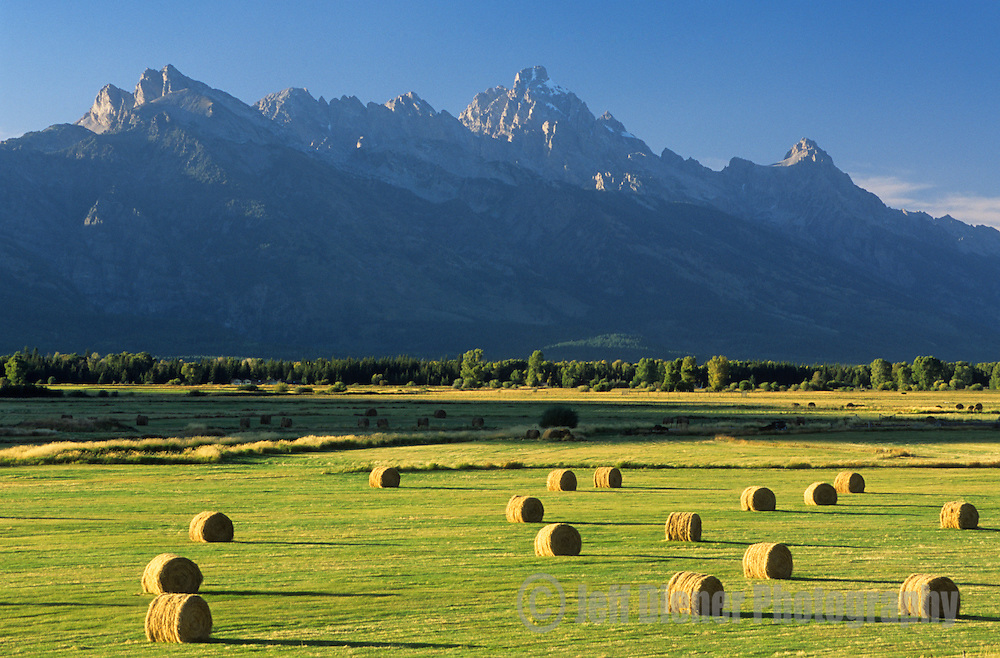 The high peaks of the Tetons tower above a field of hay bales in Jackson Hole, Wyoming.