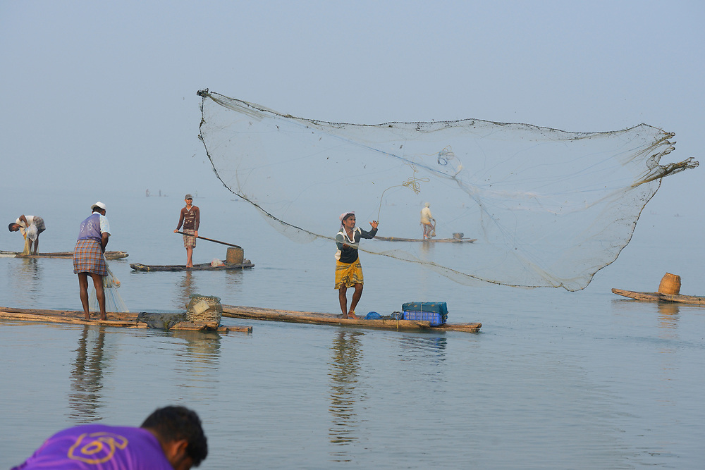 Throw-net fishermen, Pulicat Lake, Tamil Nadu, India
