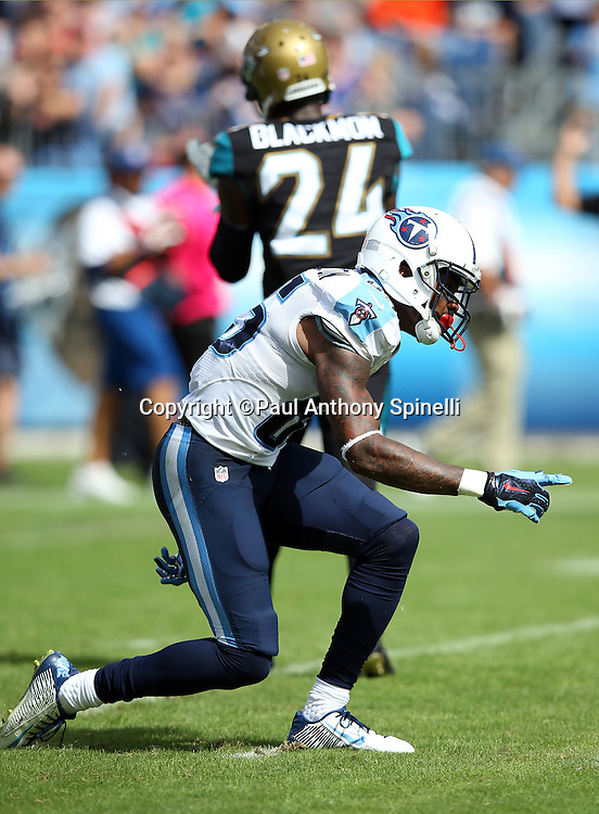 Tennessee Titans wide receiver Nate Washington (85) celebrates after catching a 17 yard pass for a first down in the second quarter during the NFL week 6 regular season football game against the Jacksonville Jaguars on Sunday, Oct. 12, 2014 in Nashville, Tenn. The Titans won the game 16-14. ©Paul Anthony Spinelli