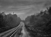 Route Nationale 2, Guyane, 2015.<br /> <br /> Le r&eacute;seau routier guyanais, peu d&eacute;velopp&eacute;, est apparu dans les ann&eacute;es 1970. Principalement constitu&eacute; d&rsquo;un axe de pr&egrave;s de 450 km (RN1/RN2, il relie Saint Laurent du Maroni &agrave; Saint-Georges de l&rsquo;Oyapock, ou plus globalement reliant les fronti&egrave;res respectives du Suriname &agrave; l&rsquo;Ouest et du Br&eacute;sil &agrave; l&rsquo;Est.<br /> <br /> Les routes traversent maintenant les grands fleuves guyanais sur des ponts impressionnants. Avant leur r&eacute;cente construction, des bacs transportaient les personnes, marchandises et v&eacute;hicules d'une rive &agrave; l'autre le long de la piste. D'abord exclusivement situ&eacute; sur le littoral, le r&eacute;seau est constitu&eacute; par la seule la Route Nationale 1 et dessert les zones les plus peupl&eacute;es : Cayenne, Kourou et Saint Laurent du Maroni. <br /> <br /> La construction en 2003 d&rsquo;un pont qui traverse l&rsquo;Approuague &agrave; R&eacute;gina permet le d&eacute;senclavement de l&rsquo;Est guyanais avec la construction de la Route Nationale 2 qui relie Cayenne &agrave; Saint-Georges de l'Oyapock. Termin&eacute;e en 2005, en saison des pluies la route subit une d&eacute;gradation continuelle et plusieurs portions sont r&eacute;guli&egrave;rement impraticables.<br /> Prolong&eacute;e par la BR-156 jusqu&rsquo;&agrave; Macapa sur le delta de l&rsquo;Amazone, la RN2 rejoindra Oiapoque, ville br&eacute;silienne frontali&egrave;re qui fait face &agrave; Saint-Georges, lorsque le pont sur l'Oyapock sera inaugur&eacute;. Termin&eacute; depuis trois ans, il n&rsquo;est toujours pas ouvert &agrave; la circulation, apr&egrave;s plusieurs annonces, plus aucune date d&rsquo;inauguration n&rsquo;est officiellement retenue.