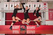 Marist High School 2015 Volleyball Photography. Chicago, IL. Chris Pestel Photographer
