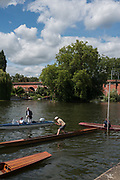 """Maidenhead, United Kingdom. General view,  of a handy capped start.  """"Thames Punting Club Regatta"""", Bray Reach.<br /> 13:42:24 Sunday  06/08/2017<br /> <br /> [Mandatory Credit. Peter SPURRIER Intersport Images}.<br /> <br /> LEICA Q (Typ 116) 28mm  f5.6   1/800 /sec    100 ISO River Thames, .......... Summer, Sport, Sunny, Bright, Blue Skies, Skilful,"""