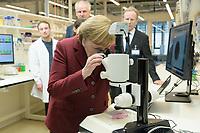 """26 FEB 2019, BERLIN/GERMANY:<br /> Angela Merkel,  CDU, Bundeskanzlerin, schaut sich ein """"Mini-Gehirn"""" (Organoid) in der Petrischale unter dem Mikroskop an, waehrend einem Rundgang der Kanzlerin durch das Labor anl. der Eroeffnung des zweiten Standorts des Max-Delbrueck-Centrums fuer Molekulare Medizin (MDC) in Berlin-Mitte<br /> IMAGE: 20190226-01-0<br /> KEYWORDS: Max-Delbrück-Centrum"""