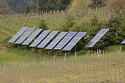 Solar panels provide about 30 percent of the power needs of Sokol Blosser Winery near Dundee, Oregon.