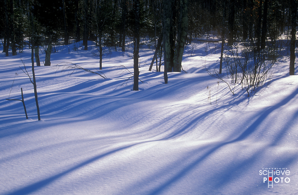 Setting sun casts shadows on new fallen snow.