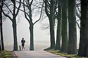 Nederland, Ooijpolder, 28-2-2013Op een weg met aan weerszijden bomen, loopt een man hard. De Ooijpolder ligt pal naast de stad en is populair bij lopers en andere recreanten.Foto: Flip Franssen/Hollandse Hoogte