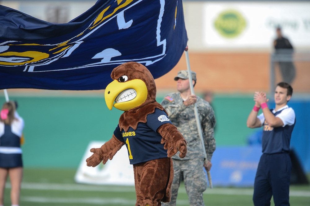 Flash, the mascot of Kent State sports, is greeted on the field by an ROTC Cadet during a home football game at Dix stadium.