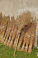 Broom and Sesame Seed stalks, Xidi Village, UNESCO World Heritage Site, China