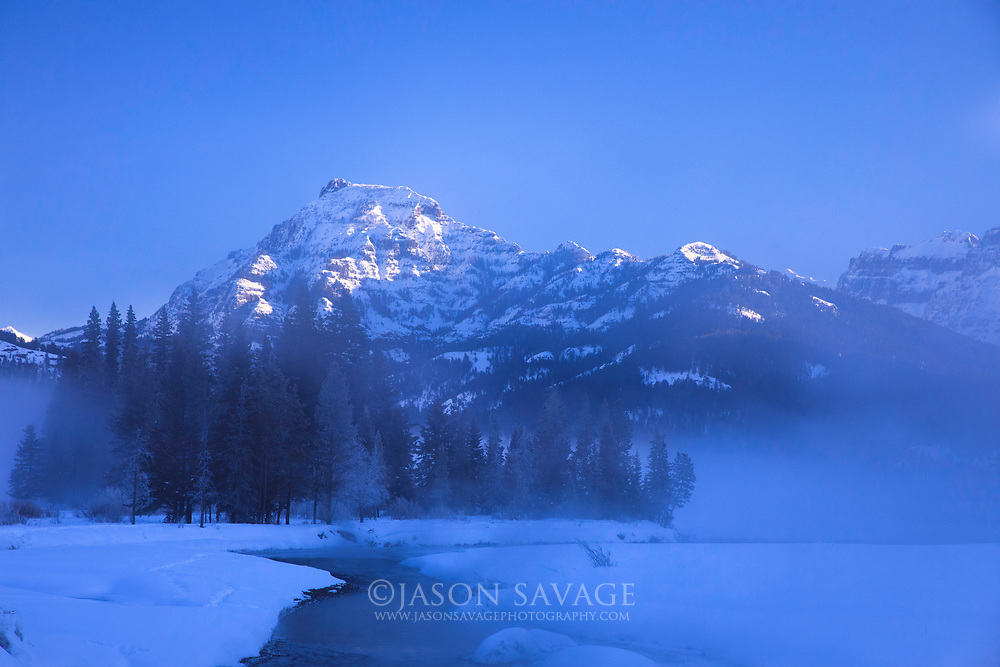 Winter morning in Yellowstone's northern range near Cooke City, Montana.