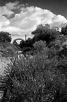 """Vista di una ferrovia dimsessa, situata nell'entroterra della c.d. circummarepiccolo, la strada che costeggia il mare piccolo di Taranto.. Il mare piccolo Ë un mare artificiale che fu fatto realizzare da re Ferdinando I di Napoli nel 1481. Per questo Taranto Ë conosciuta come """"la citt? dei due mari"""", il Mare Grande e, appunto, il Mare Piccolo. Nel seno del Mare Piccolo inizia la coltivazione dei mitili (le cozze""""), favorita dalla presenza dei c.d. citri, ovvero """"sorgenti di acqua dolce che sboccano dalla crosta sottomarina [e che] rappresentano lo sbocco naturale di quei corsi d'acqua che in epoche assai remote hanno dato origine alle gravine in Puglia, e che scomparsi oggi dalla superficie scorrono in reti idrografiche sotterranee sfociando nel Mar Ionio e nel Mare Adriatico..La ferrovia ormai dismessa costeggia il Mar Piccolo e univa la polveriera presente a Buffoluto penetrando all'interno dell'Arsenale militare..A quanto pare lungo i binari in disuso si svilupper? la nuova metropolitana di Taranto (fonte http://trail.unioncamerepuglia.it/news.asp?id=289).."""