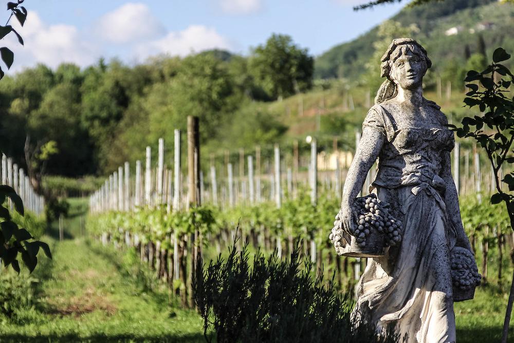 Spring in the Veneto Region