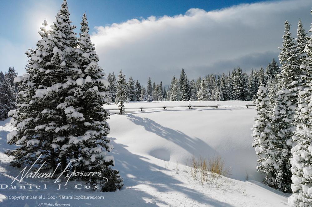 Snowy scenic near Bozeman, Montana.