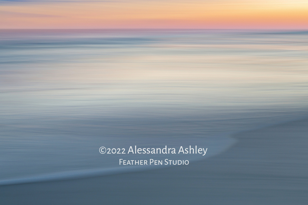 Long exposure pan blur, sunset, coastal South Carolina.