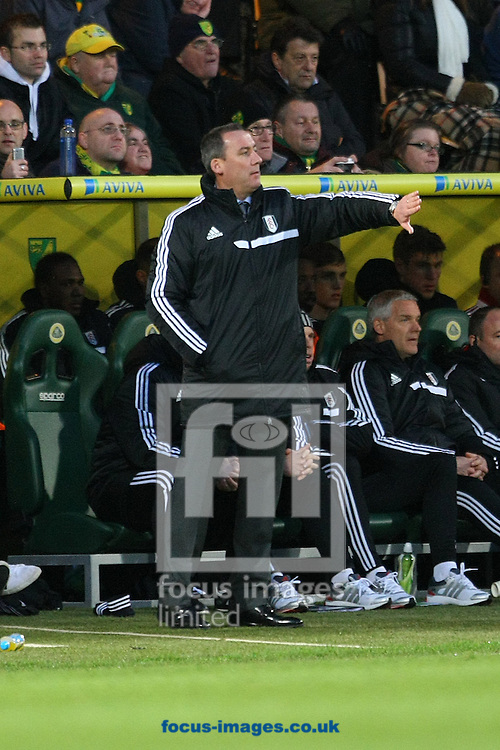 Picture by Paul Chesterton/Focus Images Ltd +44 7904 640267<br /> 04/01/2014<br /> Fulham Manager Rene Meulensteen during The FA Cup match at Carrow Road, Norwich.
