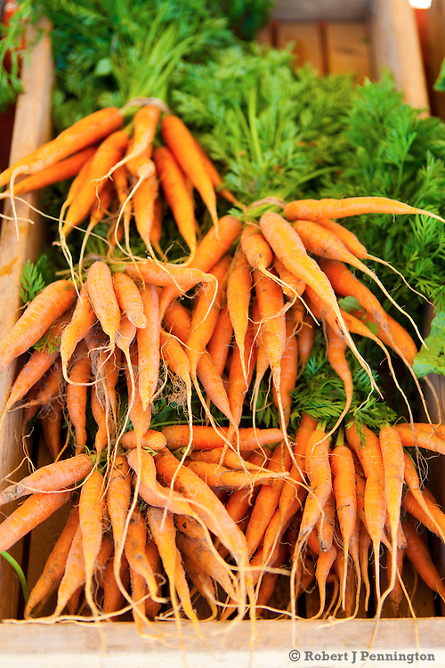 Rhizome Images,Farmers Market,Fresh,Homegrown,Garden,Vegetables,Organic,Local,Sustainable,Carrots