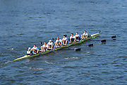 Barnes, Greater London, United Kingdom. Molesey BC, after passing under Barnes Rail Bridge, 2014 Head of the River Race, Mortlake to Putney, Championship Course River Thames;  Saturday   29/03/2014   [Mandatory Credit; Peter SPURRIER/Intersport Images].
