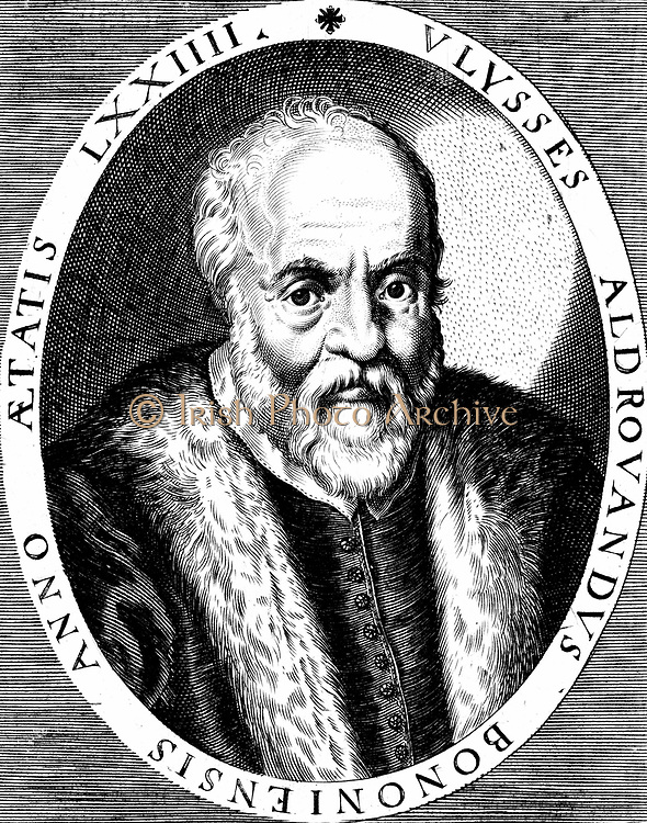 Ulisse Aldrovandi (1522-1605)  Italian botanist, naturalist and physician. Published illustrated books on fishes, birds and insects. 16th century copperplate engraving.
