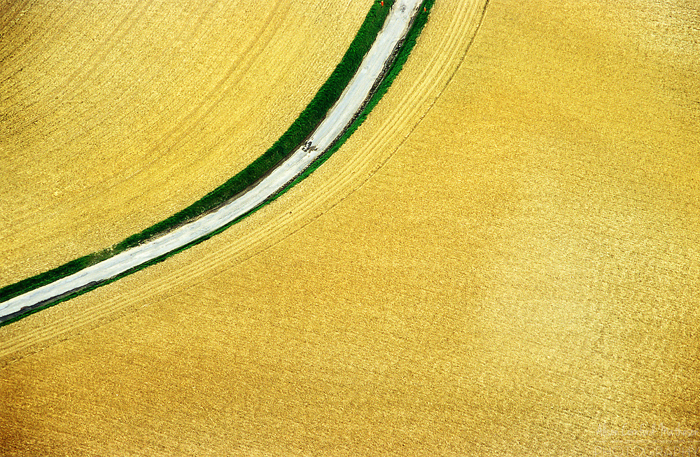 An aerial view of a wheat field in Belgium.